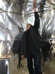 Отделка парилки в заповеднике Завидово, 2009г.  Утепление стен рубленых из брёвен стен парилки и монтаж фольги.
